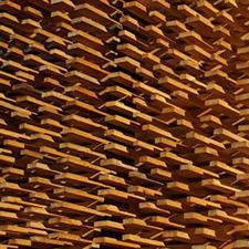 Haisch Holz